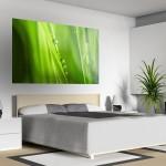 Schlafzimmer Fotoleinwand Gras