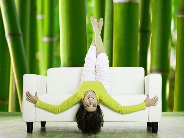 Bambus Fototapete